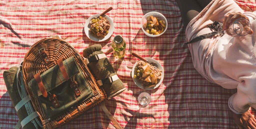 Free date ideas picnic blanket